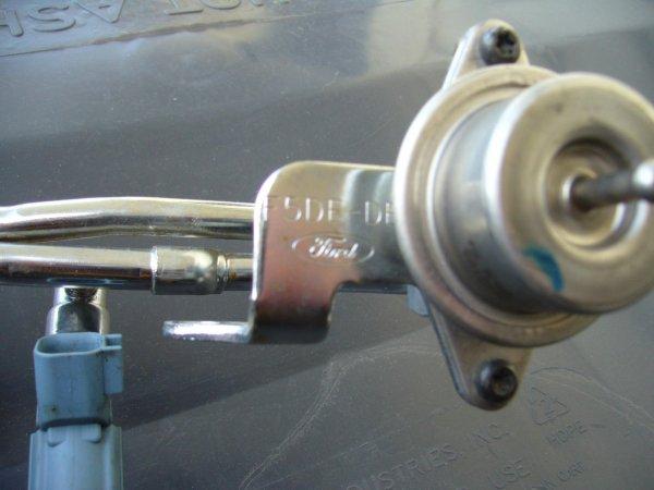 P1030408.JPG